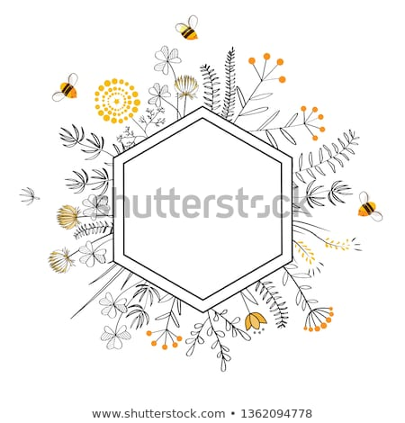 Foto stock: bee on a frame with honey