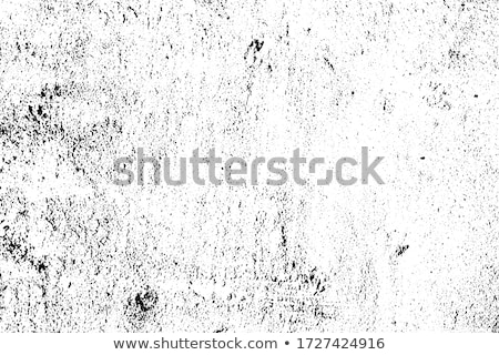 pattern of dried grunge plaster at the street stock photo © meinzahn