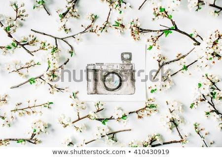 Retro kamera vízfesték festmények fehér asztal Stock fotó © manera