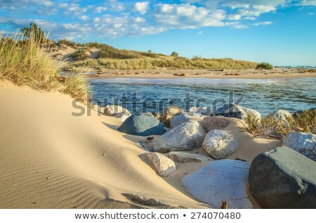 Sand Dunes, pure nature beautiful landscape Stock photo © JanPietruszka