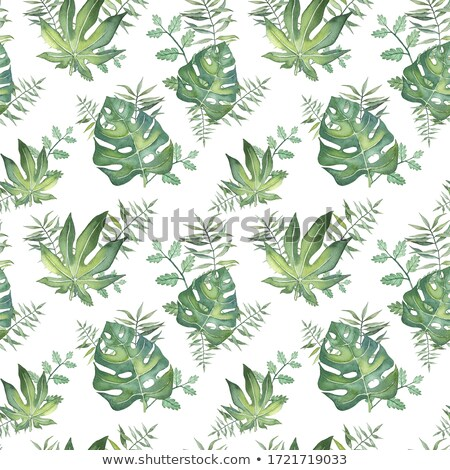 summer seamless tropical pattern with monstera palm leaves and p stock photo © bluelela