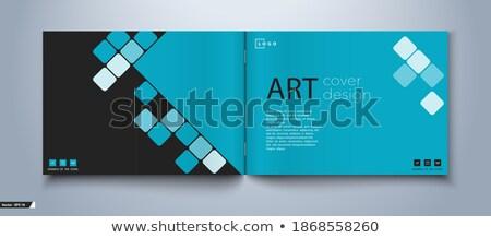 Könyv cím pénzügyi oktatás gerincoszlop közelkép Stock fotó © tashatuvango