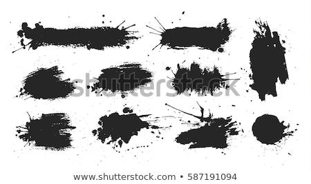 vektor · szett · fehér · absztrakt · festék · fekete - stock fotó © adamson