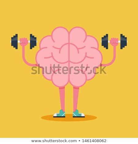 Cerebro formación pesas mente entrenamiento vector Foto stock © Andrei_