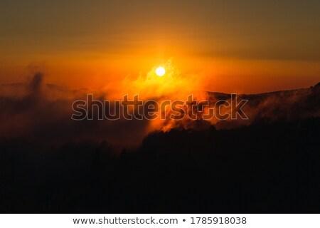Stok fotoğraf: Panorama · gün · batımı · şehir · mavi · seyahat · gece