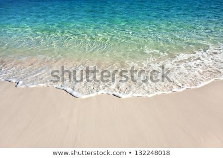 caribbean · strandzand · textuur · wal · golf · schuim - stockfoto © lunamarina