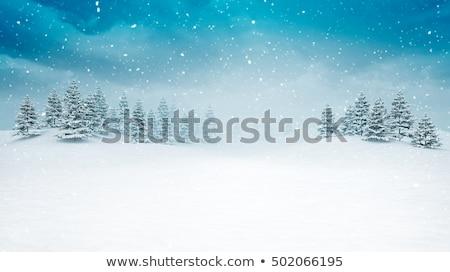 winter · bos · landschap · panorama · panoramisch · sneeuwval - stockfoto © blasbike