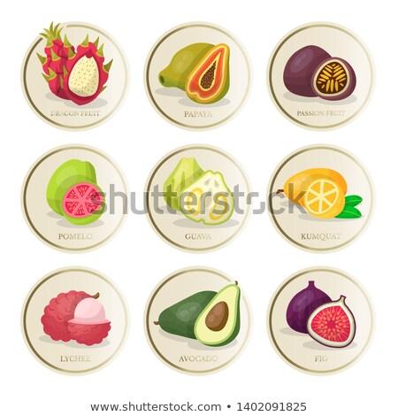 Pomelo and Kumquat Posters Vector Illustration Stock photo © robuart