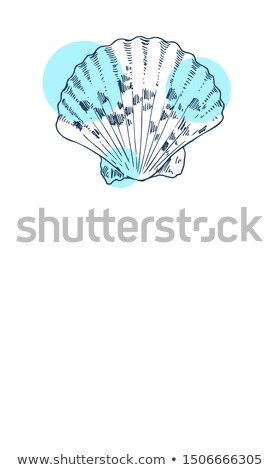 scallop marine creature poster with text sample stock photo © robuart