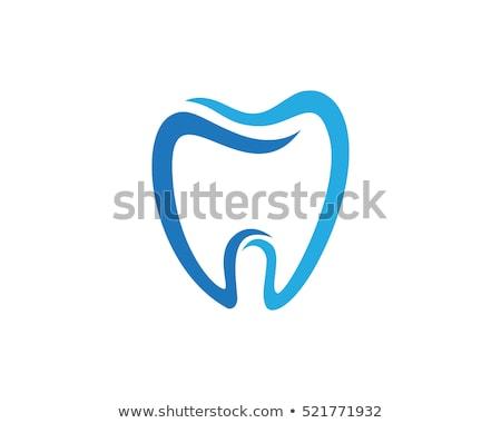 Dişçi diş logo simge vektör Stok fotoğraf © blaskorizov