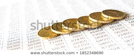 роста докладе инвестиции аналитика стратегия финансовых Сток-фото © cifotart