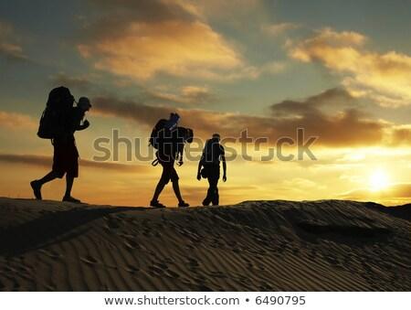 Silhouet backpacker lopen woestijn hand Stockfoto © nito