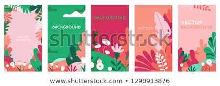 colección · flores · de · primavera · dos · bastante · romántica · banners - foto stock © barbaliss