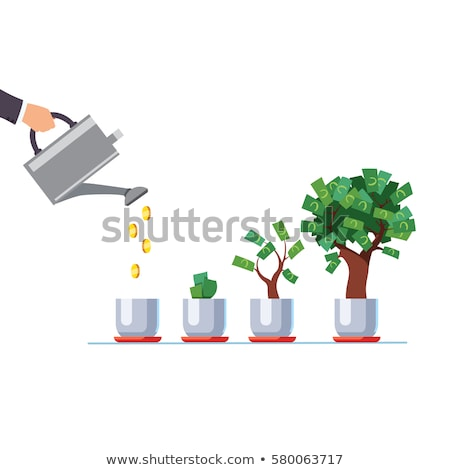 Watering Can Pouring Water In Money Plant Stock photo © AndreyPopov