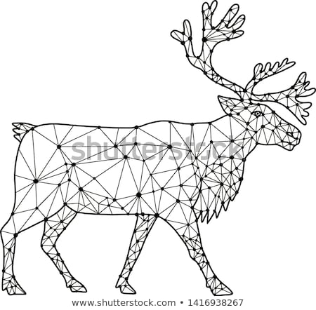 Caribou Side Nodes Black and White Stock photo © patrimonio