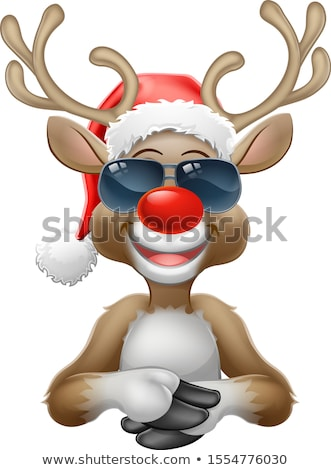 Christmas Santa Hat Reindeer Sunglasses Sign Stock photo © Krisdog