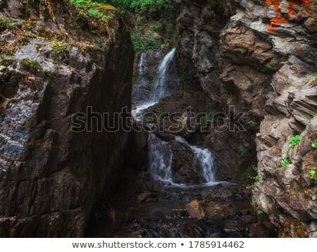 Cachoeira montanhas ocidente sibéria Rússia Foto stock © olira