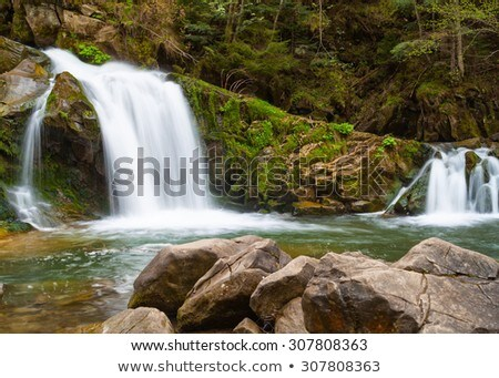 A small waterfall with rocks and green trees stock photo © azjoma