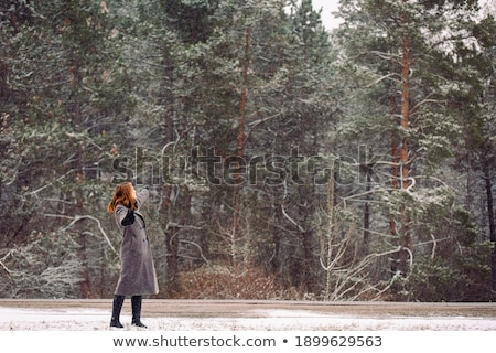 Winter portret meisje buiten vrouw Stockfoto © Lopolo
