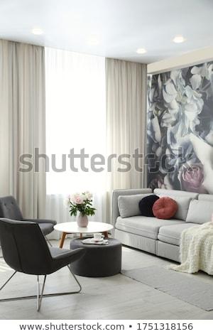 リビングルーム 詳細 デザイン スタイリッシュ 高級 家具 ストックフォト © amok