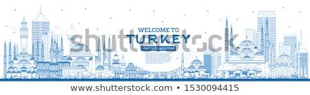 Стамбуле Skyline синий копия пространства Сток-фото © ShustrikS