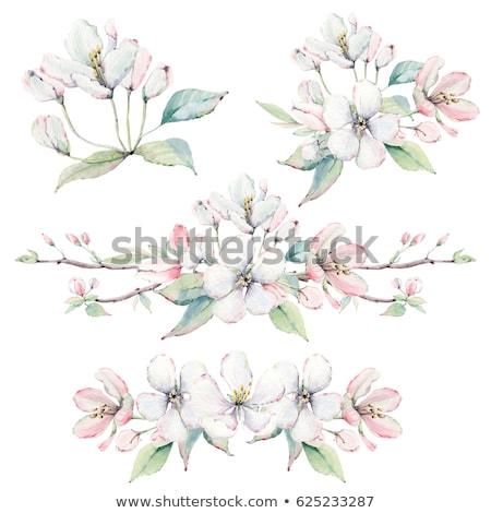 alma · virág · fa · fából · készült · virág · fa - stock fotó © neirfy