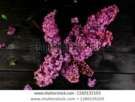virágcsokor · öreg · váza · fehér · virág · tavasz - stock fotó © illia