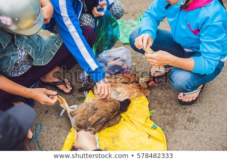 Chicken sold in the Vietnamese market. Asian food concept Stock photo © galitskaya