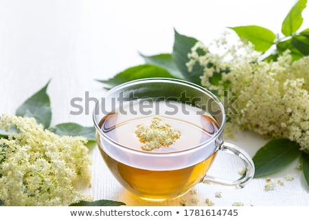 Stock photo: elderberry tea