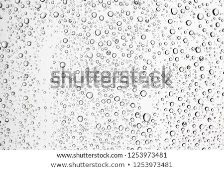 nar · meyve · suyu · cam · iki · içme · yalıtılmış - stok fotoğraf © meinzahn