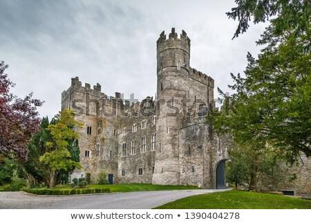 城 アイルランド 中世 牙城 村 建物 ストックフォト © borisb17