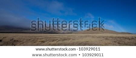 Beautiful panoramic rainbow along Burk's Pass region south islan Stock photo © JohnKasawa