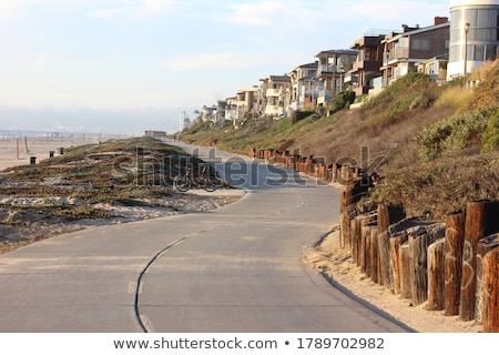 beautiful Hermosa Beach in California Stock photo © meinzahn