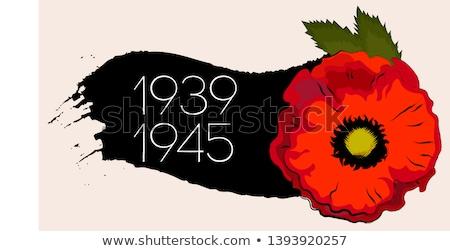 World War II commemorative symbol with dates, poppies Stock photo © creativika