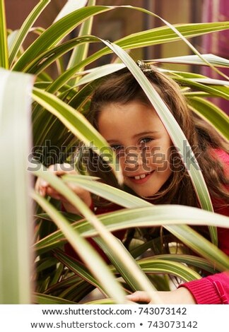 Girl peering through leaves of plant Stock photo © IS2