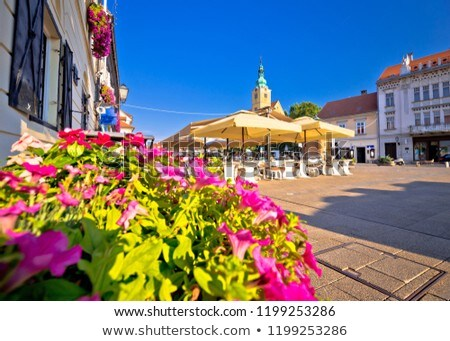 Samobor main square colorful flowers and architecture view stock photo © xbrchx