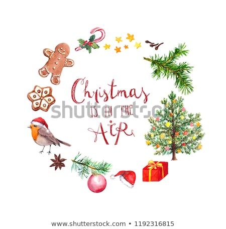 robin with Christmas ball on tree Stock photo © adrenalina