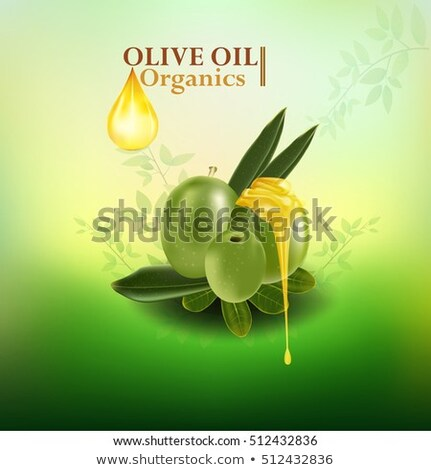 Hair Oil Ingredient Olive Green Branch Vector Stock photo © robuart