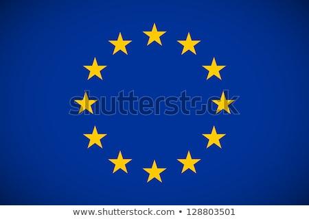 European union flag, vector illustration on a white background. Stock photo © butenkow
