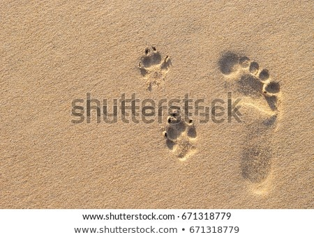 insan · ayak · izleri · plaj · kum · su · dalga - stok fotoğraf © dmitroza