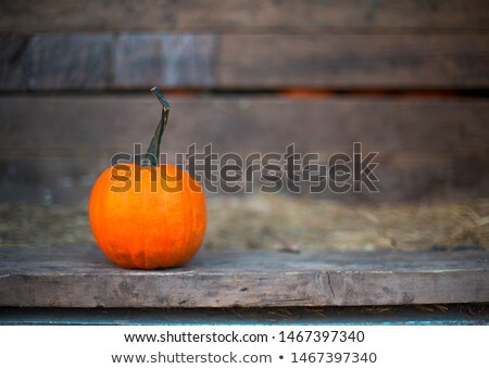One pumpkin in the old truck. Close up.  Stock photo © dashapetrenko