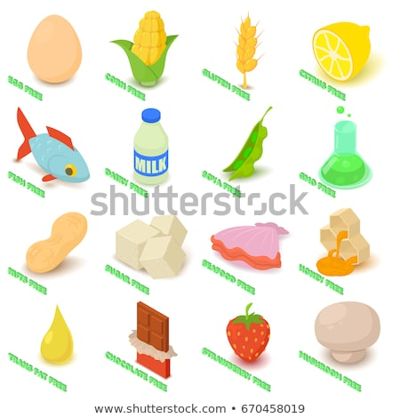 Allergen Free Sign Fat Food isometric icon vector illustration Stock photo © pikepicture