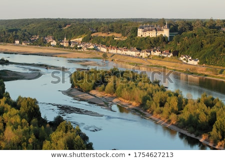 Loire river Stock photo © neirfy