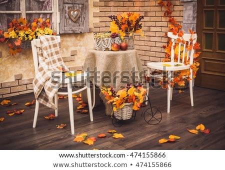 autumn fall leaves decorative still at studio white background stock photo © lunamarina