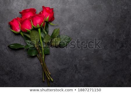 mély · rózsaszín · rózsa · absztrakt · makró · virágzik · virág - stock fotó © taviphoto