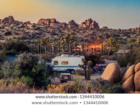 scenic golden rocks  in Joshua Tree National Park  Stock photo © meinzahn