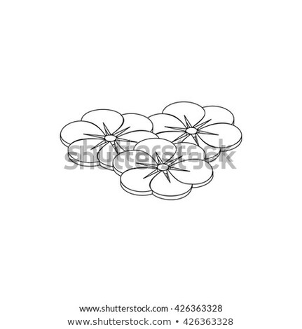 Flor seis pétalas ícone isométrica 3D Foto stock © ylivdesign