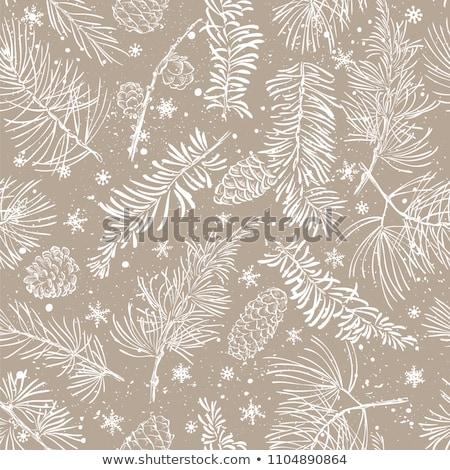Weihnachten Zweig bedeckt Schnee Holz Stock foto © karandaev