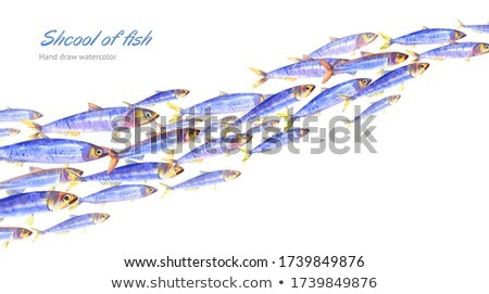 Fishing Set of Isolated on White Colorful Banners Stock photo © robuart