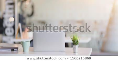 Jong meisje vergadering computer bureau kantoor mooie Stockfoto © Traimak